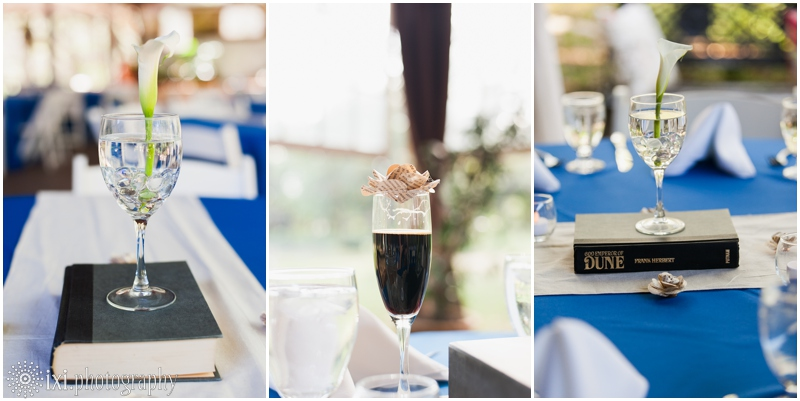 Amber_Jimmy_Wedding-491_star-wars-lord-of-the-rings-wedding-inn-at-wild-rose-hall-photography